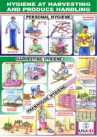 Harvest-and-Packhouse-Hygiene-poster